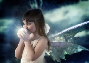 fairy sessions gregorys portrait art